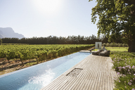 Luxury lap pool among garden and vineyard - CAIF17961
