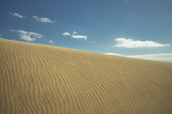 Spain, Canary Islands, Gran Canaria, sand dune in Maspalomas - STCF00423