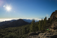 Spain, Canary Islands, Gran Canaria, view from Roque Nublo - STCF00426