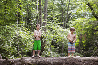 Brothers fishing while standing on tree trunk in forest - CAVF09868