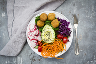 Plate of Falafel and salad - LVF06787