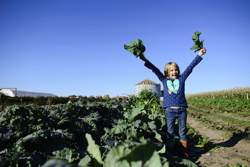 Portrait of happy girl holding leaf vegetables while standing on farm against clear sky during sunny day - CAVF10387