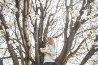 Low angle portrait of girl holding flowers while standing on tree - CAVF10483