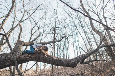 Low angle view of girl sitting on branch in forest - CAVF10507