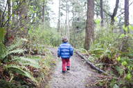 Rear view of boy walking on dirt road amidst trees in forest - CAVF10528