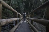 Rear view of woman walking on wooden bridge in forest - CAVF10549