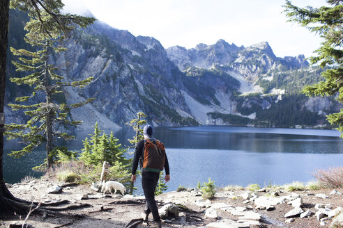 Rear view of hiker and dog on shore by Snow Lake - CAVF10588