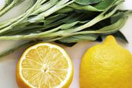 Close-up of lemon and leaf vegetables - CAVF11522
