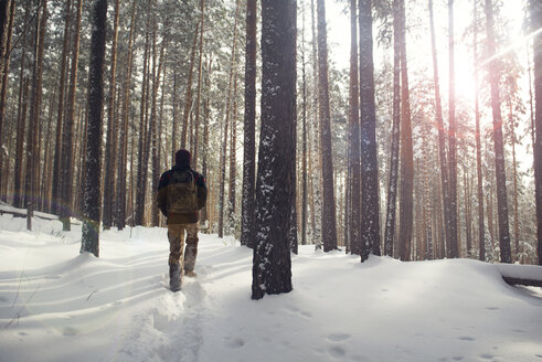 Rear view of hiker walking in snow covered forest - CAVF12997