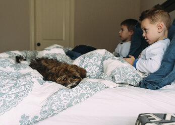 Brothers looking away while sitting on bed with dog at home - CAVF14572
