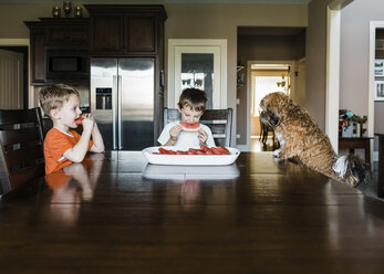 Brothers eating watermelon while sitting with dog at table - CAVF14578