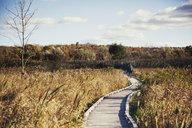 Mid distance of hikers walking on boardwalk amidst field against sky - CAVF15016