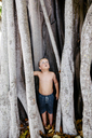Shirtless boy looking up while standing by tree trunks at park - CAVF16023