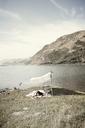 Woman relaxing under shade at seashore - CAVF16615