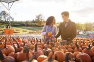 Happy couple examining pumpkins in market - CAVF17782