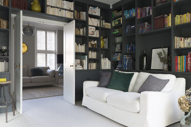 Luxury home showcase library - CAIF20217