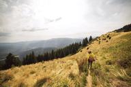 Rear view of woman walking in grassy field on mountain - CAVF17865