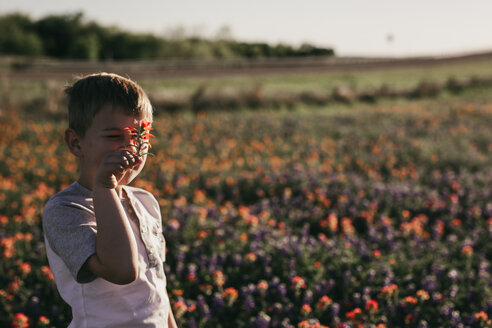 Boy holding flower against face while standing on field - CAVF18153
