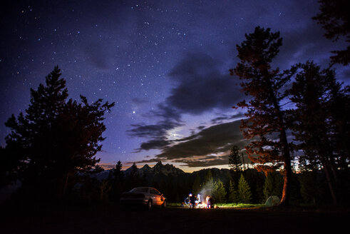 Camping amidst trees in forest against starry sky at night - CAVF18195