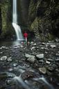 Rear view of man walking towards waterfall in forest - CAVF18213