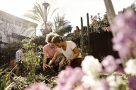 Male and female friends planting together in garden - CAVF19947