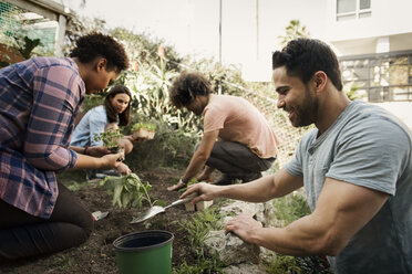 Multi-ethnic friends planting together at community garden - CAVF19953