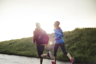 Rear view of friends running on road by grassy field during sunset - CAVF20202
