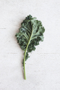 Overhead view of kale leaf on wooden table - CAVF20598