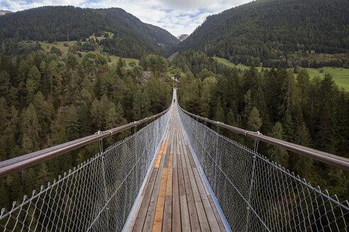 Bridge amidst trees at mountain - CAVF21369