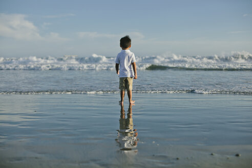 Rear view of boy standing at beach - CAVF21471