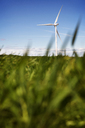 Wind turbine on grassy field against sky - CAVF22659