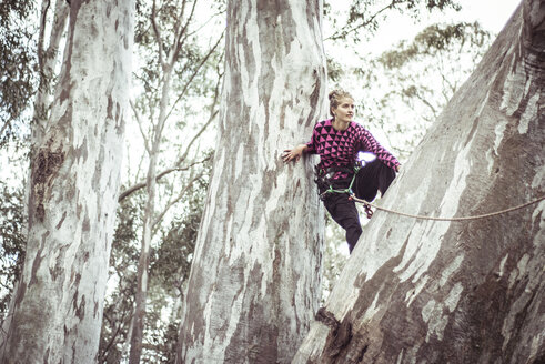 Low angle view of woman climbing tree against sky in forest - CAVF22875