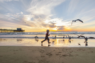 Girl playing with seagulls at beach against sky during sunset - CAVF23514