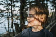 Sunlight falling on thoughtful boy against trees - CAVF24180
