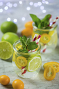 Infused water with lime, lemon, kumquat and mint - JUNF01018