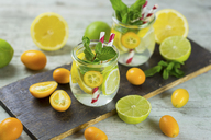 Infused water with lime, lemon, kumquat and mint - JUNF01021