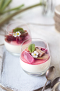 Glasses of Panna Cotta with roasted rhubarb - SBDF03487