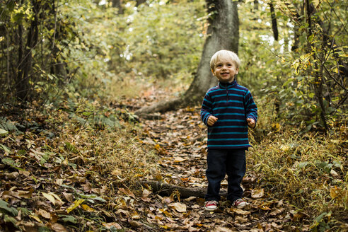 Cute boy looking up while standing on field in forest - CAVF24799
