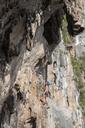 Thailand, Krabi, Lao Liang, woman climbing in rock wall - ALRF01027