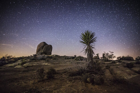 Scenic view of landscape against star field at night - CAVF24848