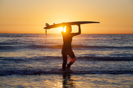 Silhouette female surfer holding surfboard and standing on shore against sky during sunset - CAVF24953