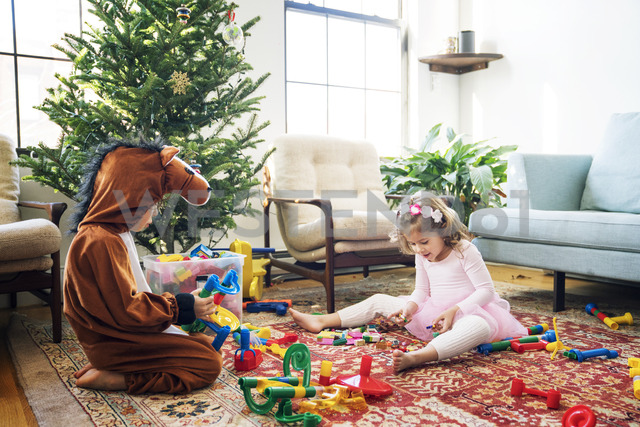 Siblings playing with building blocks while sitting by Christmas tree at home - CAVF25424