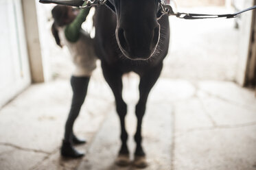 Full length of girl standing by horse in stable - CAVF26432