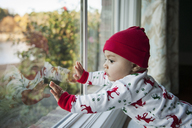 Baby boy looking through glass window at home - CAVF26660