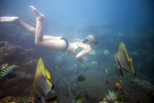 Woman swimming in sea - CAVF26779