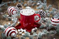 Cup of Hot Chocolate with marshmellows and Christmas decoration - LVF06823