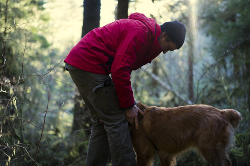 Side view of hiker playing with Golden Retriever in forest - CAVF27111