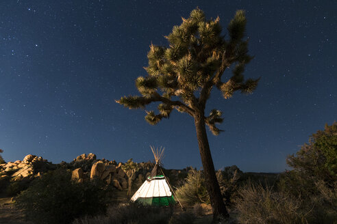 Illuminated Teepee at Joshua Tree National Park against star field - CAVF27392