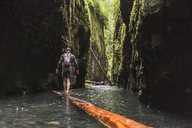 Rear view of hiker with backpack walking on wood at Oneonta Gorge - CAVF27401