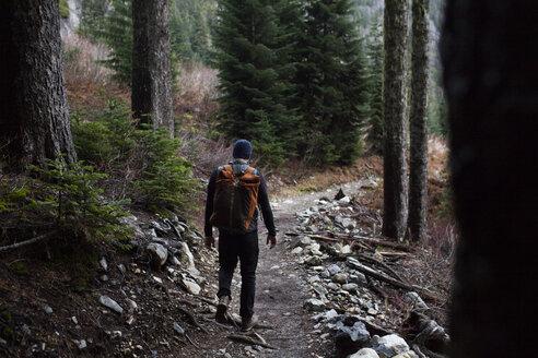 Rear view of hiker walking on dirt road by trees - CAVF28117